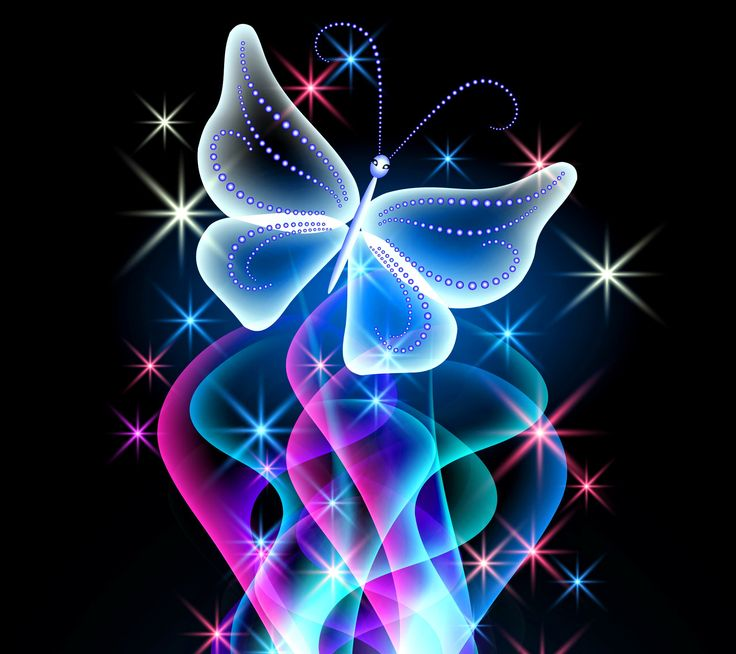 Animal Wallpapers Neon Butterfly Desktop Background wallpapers HD 736x654