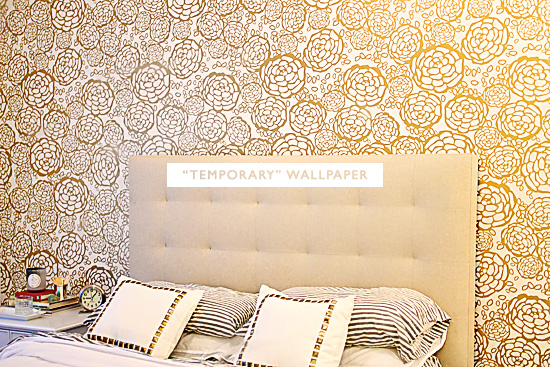 TemporaryWallpaper 550x367