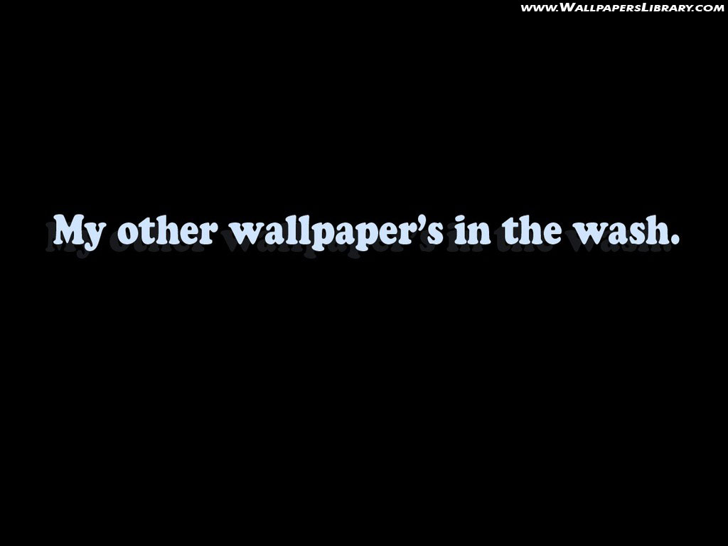 Funny Desktop Wallpapers 1024x768