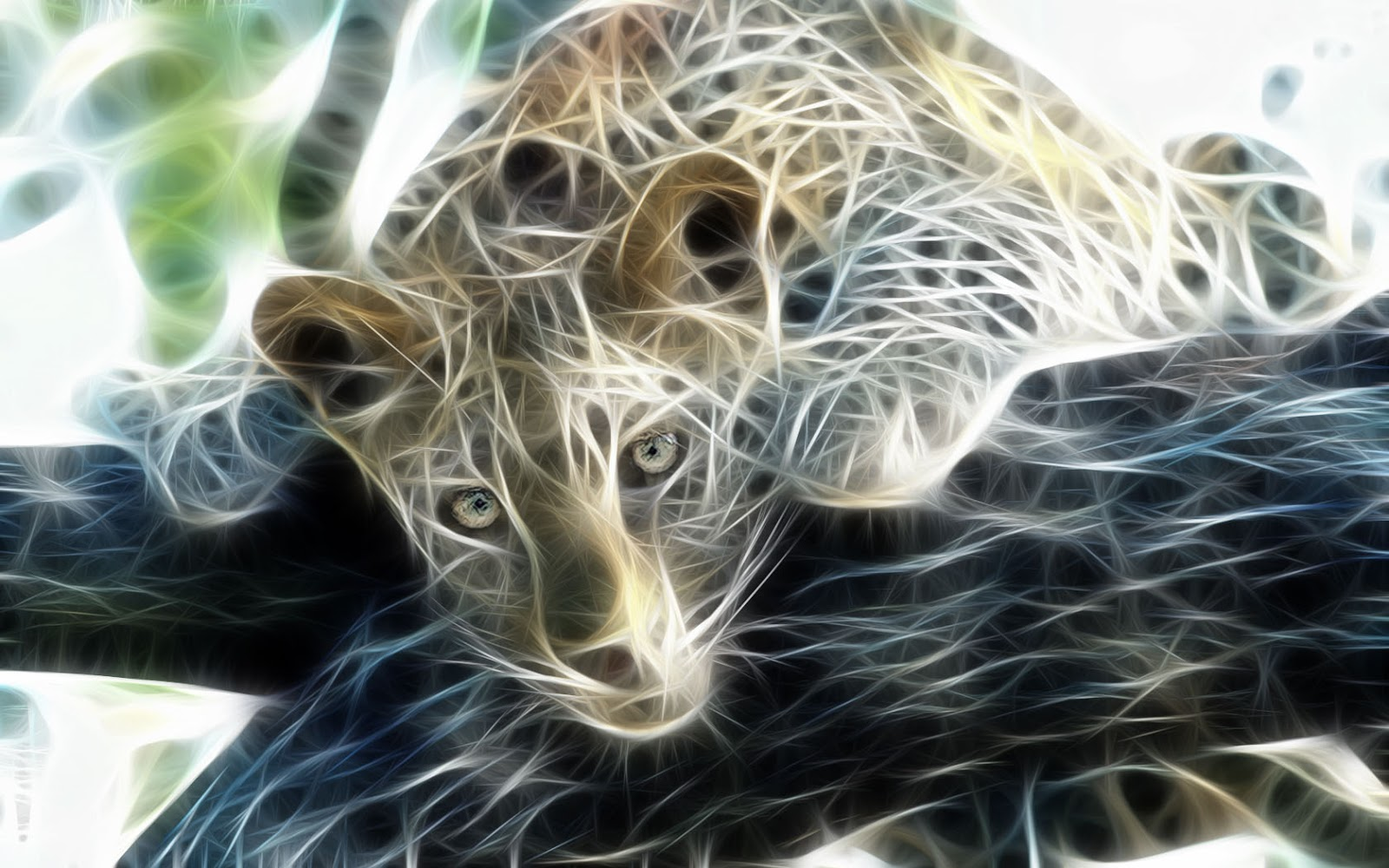 Wallpapers   HD Desktop Wallpapers Online Animal Digital Art 1600x1000