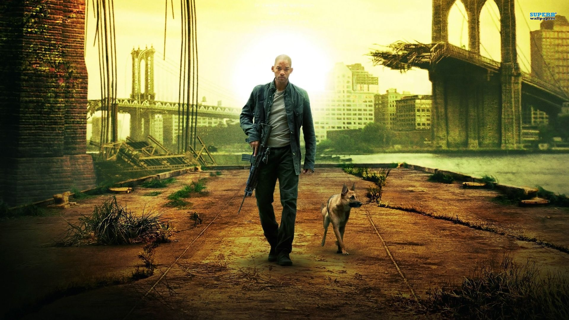 Am Legend Wallpaper 21017   Wallpaperesque 1920x1080