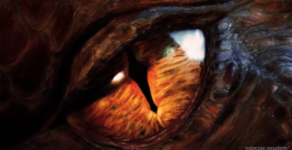 Smaug Eye Wallpaper Images Pictures   Becuo 1007x517