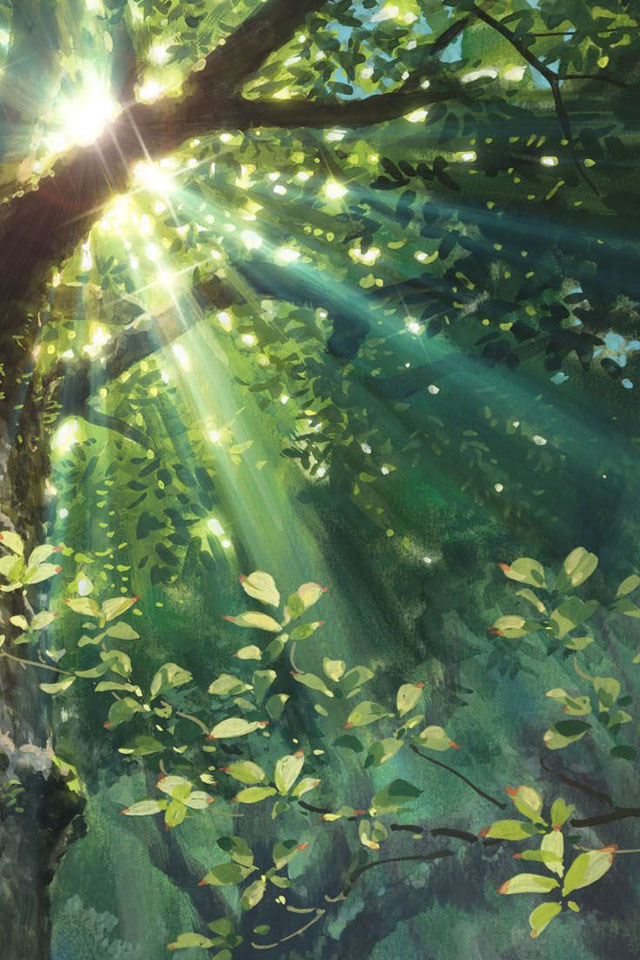 Forest Simply beautiful iPhone wallpapers 640x960