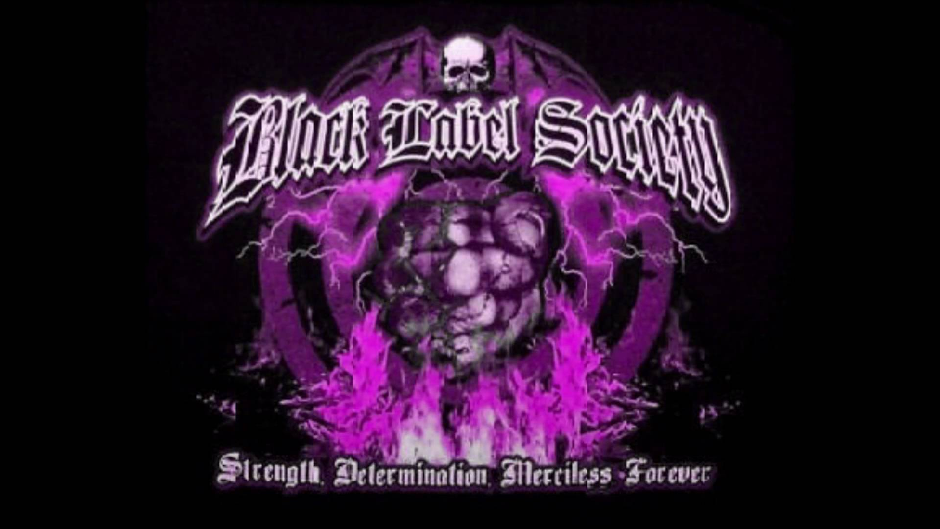 Free Download Black Label Society Sweet Home Alabama Live