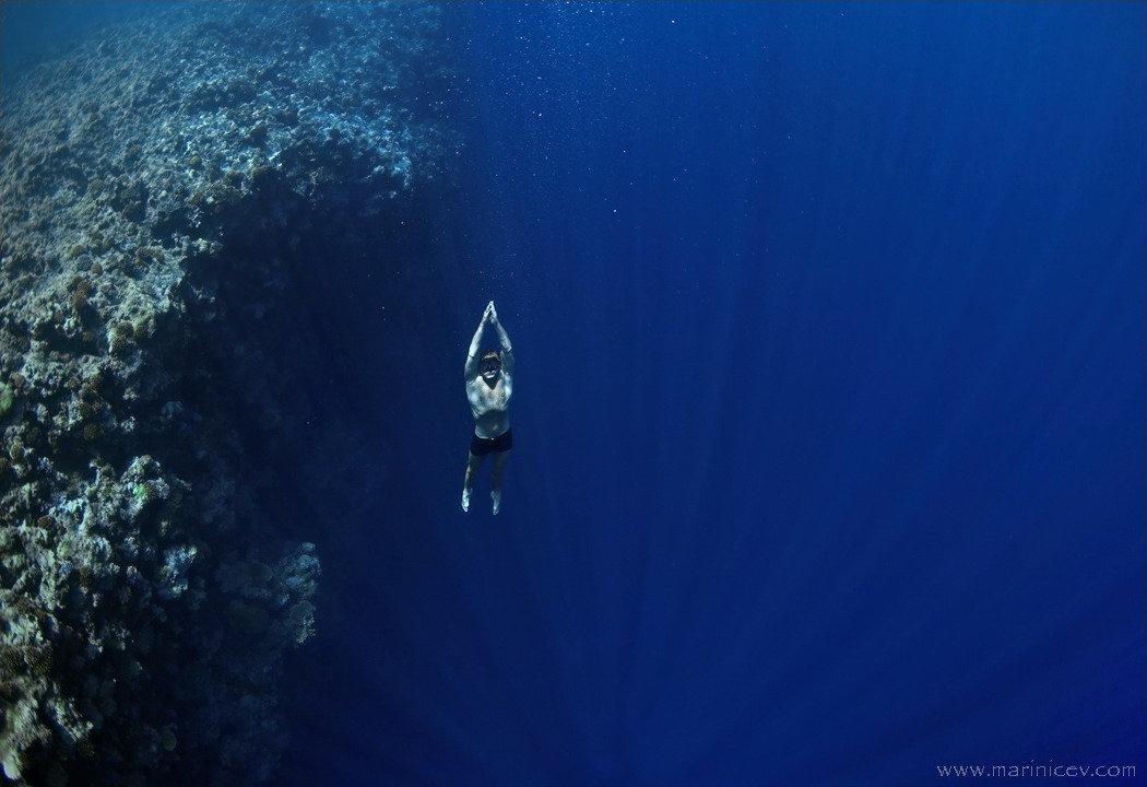 Image gallery for freediving wallpaper 1050x720