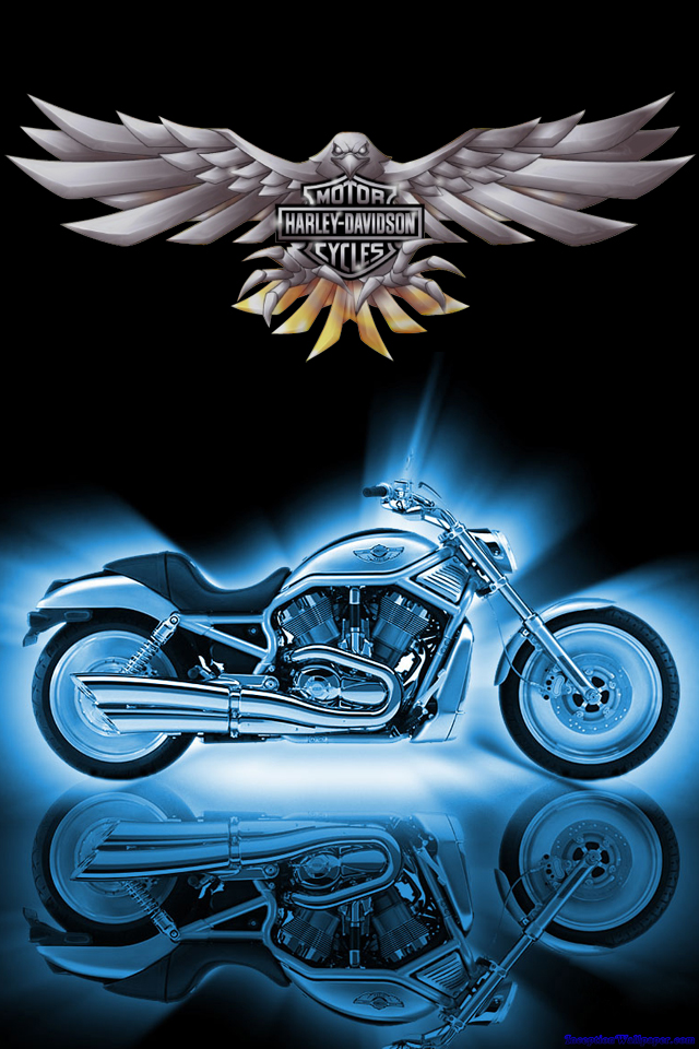 Harley Davidson iPhone Wallpaper Photo Galleries and Wallpapers 640x960