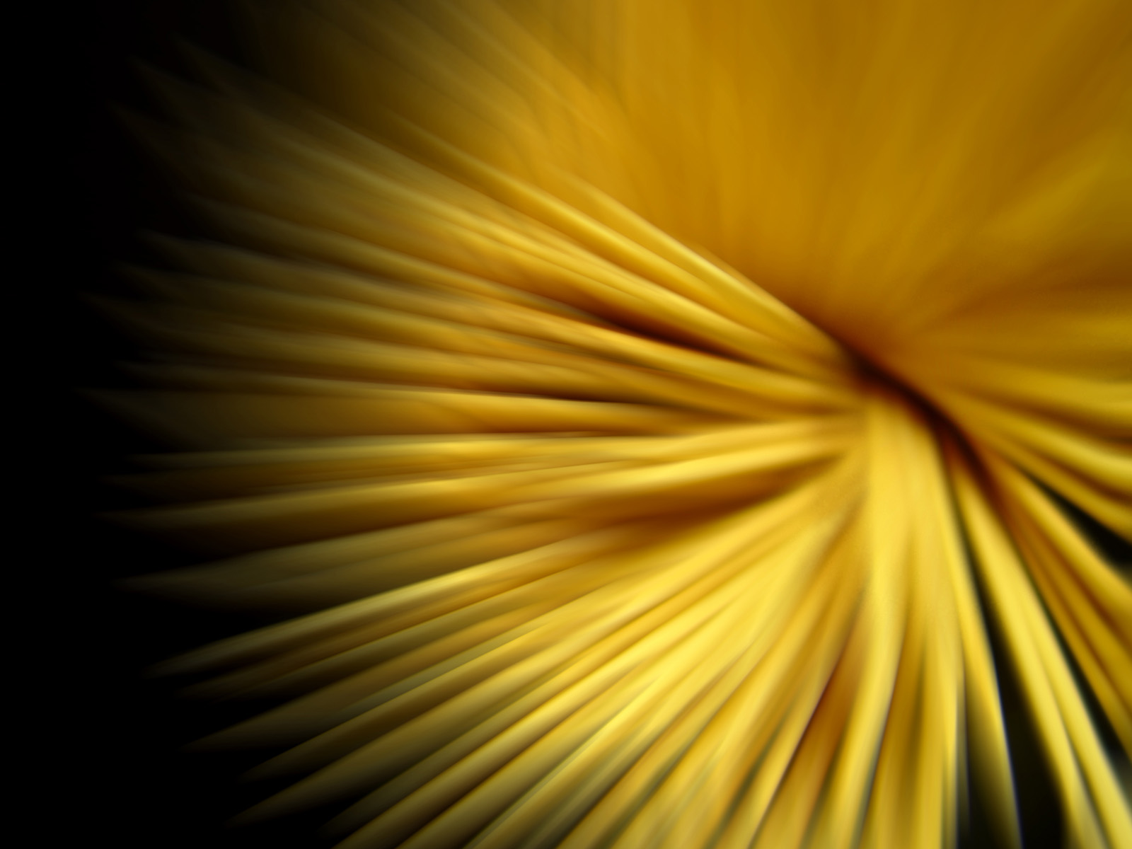 yellow wallpaper pdf wallpapersafari