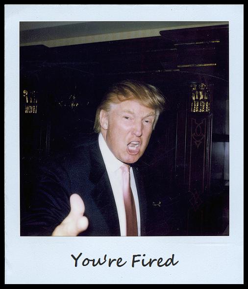 Donald Trump wallpaper   Donald Trump wallpapers   19 Wallpapers 506x590