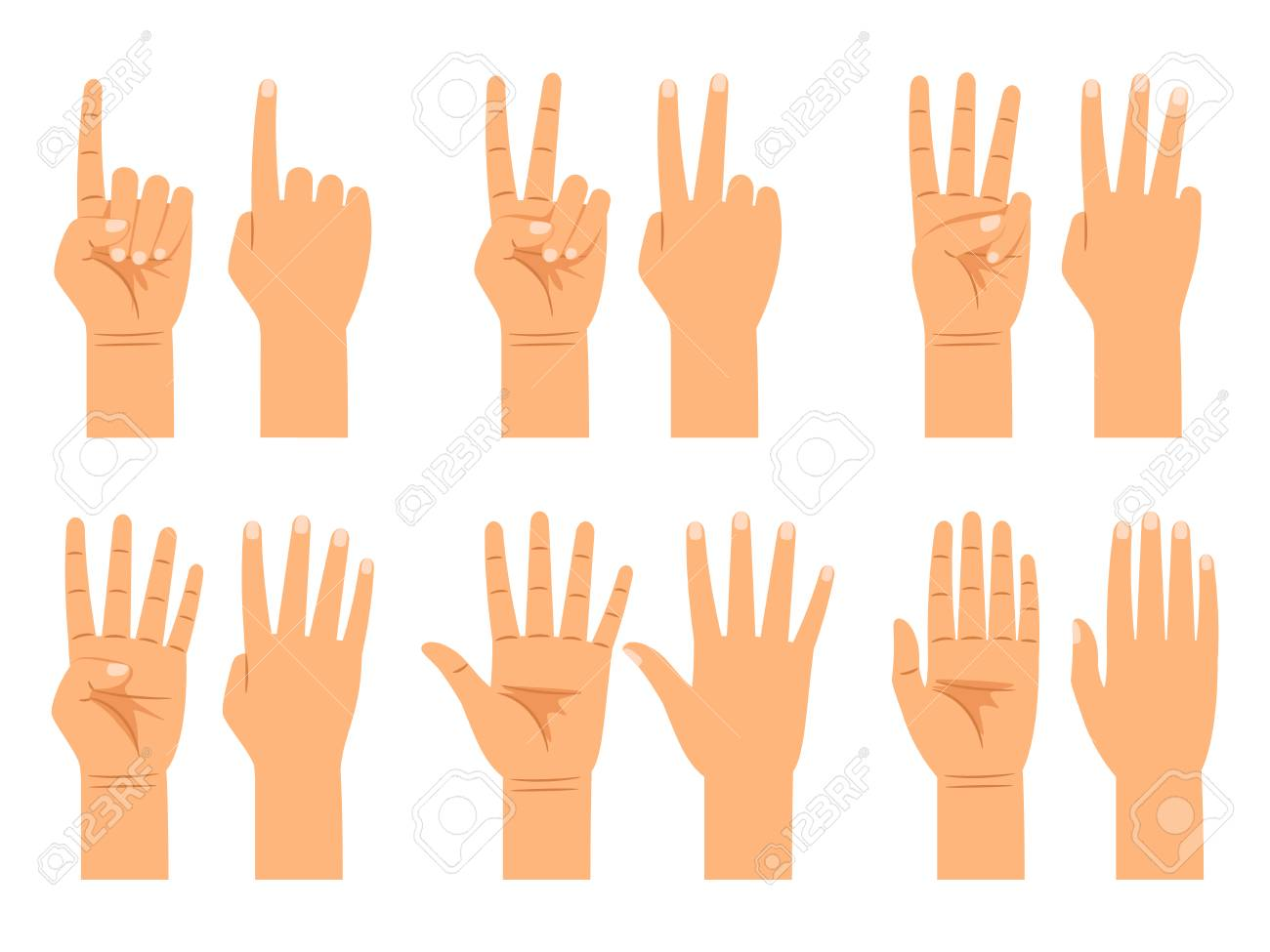 Hand Counting Isolated On White Background Flat Hands Count 1300x975