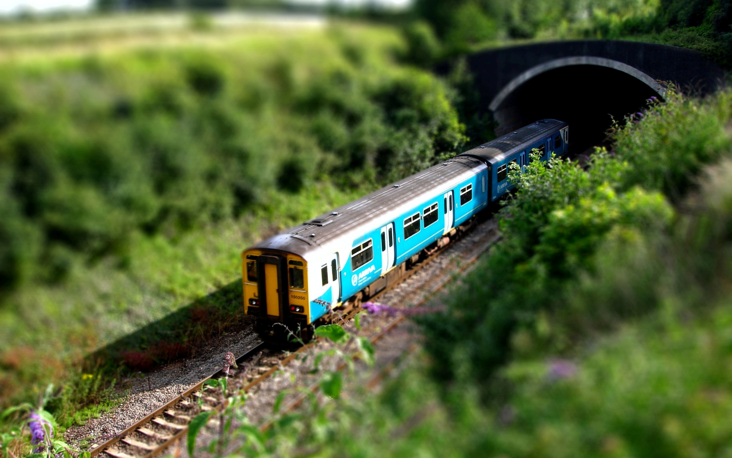 Train HD Wallpapers Images Pictures Photos Download 2560x1600