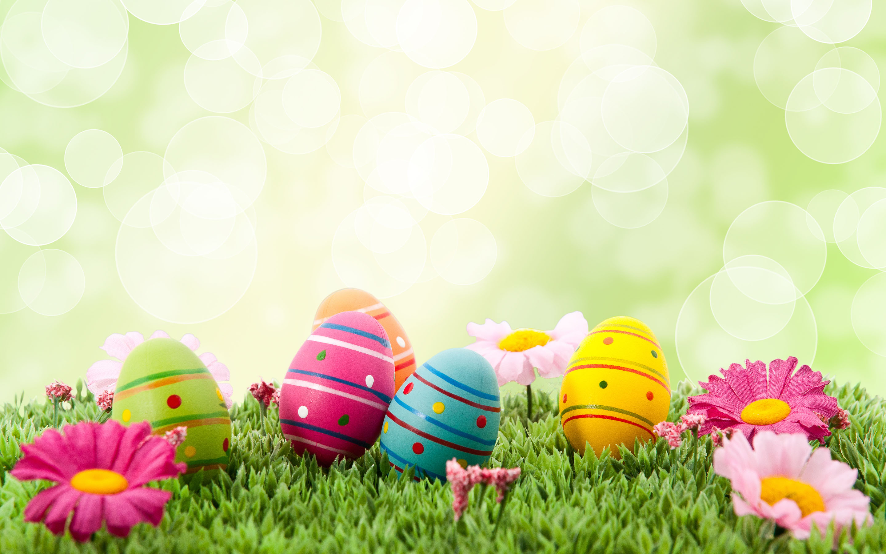 3D Happy Easter Wallpapers Screensaver HD for iPhone 2880x1800