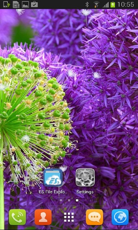 Beautiful Dandelion Flower Live Wallpaper for your Android phone 480x800