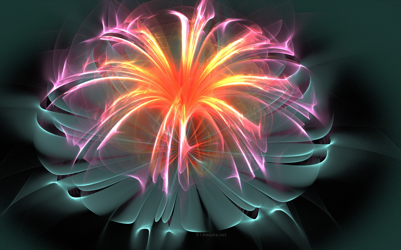Fibre optic christmas flowers and xmas flowers - Fiber Optic Flower Wallpaper 1084834 Fiber Optic Wallpaper Wallpapersafari