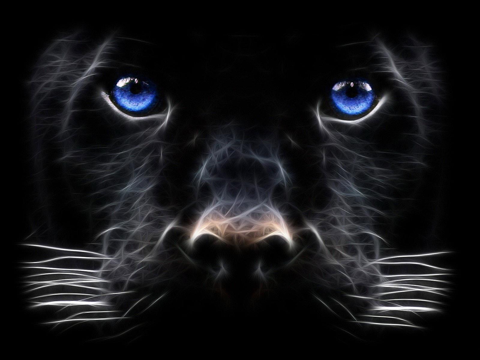 Nickname   Black Panther Big Cat Digital Art HD Wallpaper 1600x1200