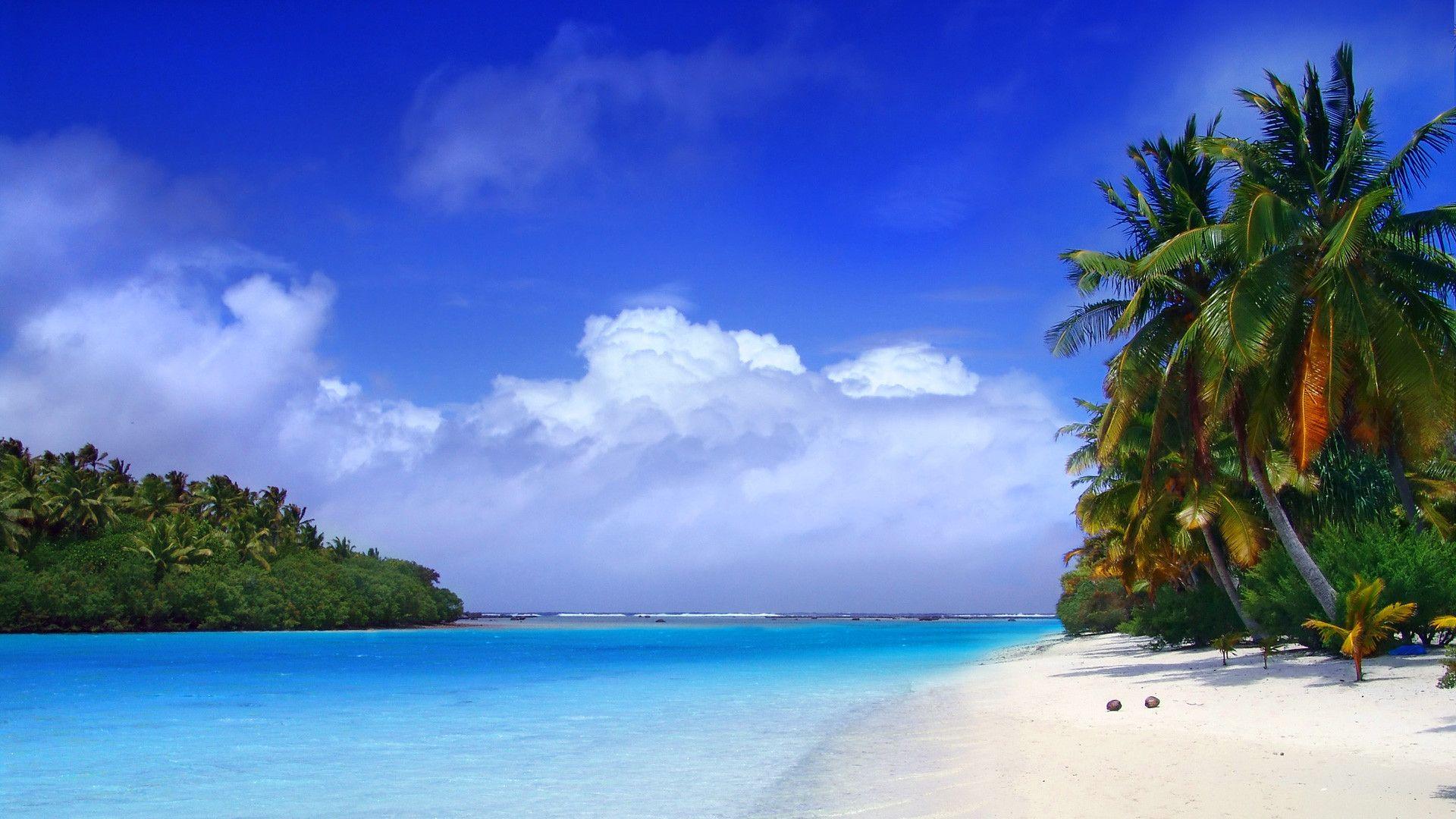 Download Caribbean Beach Wallpaper 1920x1080 HD Wallpapers   569057 1920x1080