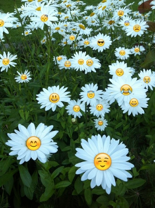 background cute emoji flower tumblr wallpaper emojis   image 610x816