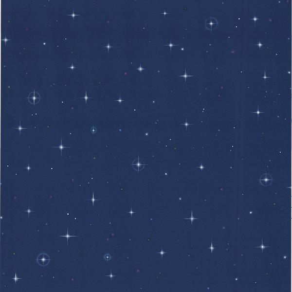 443 Jj6834 Navy Blue Stars   Starfleet   Brewster Wallpaper 600x600