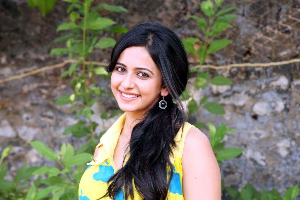 Cute Rakul Preet Singh HD wallpaper HD Wallpapers Rocks 1024683 1024x683