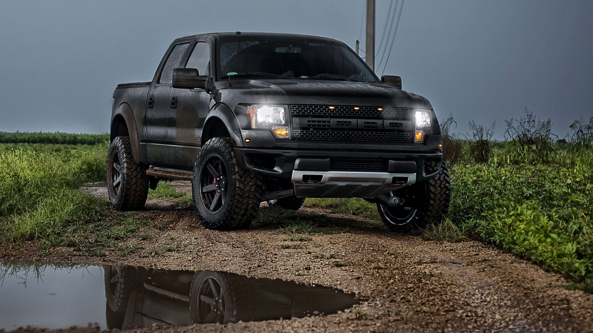 Ford Raptor car ford grass gray raptor road 1920x1080