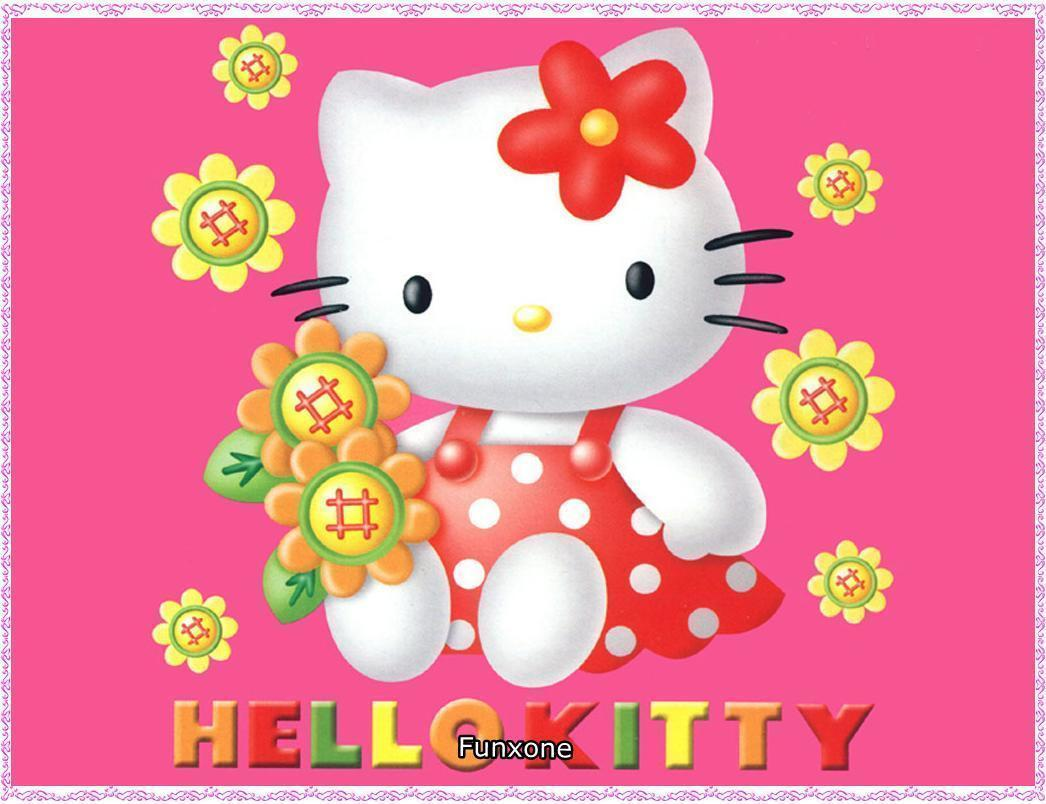 Cute Hello Kitty Wallpapers 1046x804