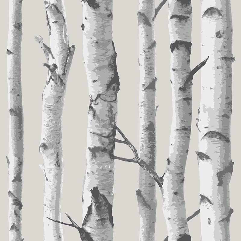 Birch Tree Peel And Stick NuWallpaper   RosenberryRoomscom 800x800