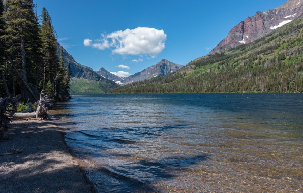 Wallpaper glacier national park montana usa sky mountains trees 596x380