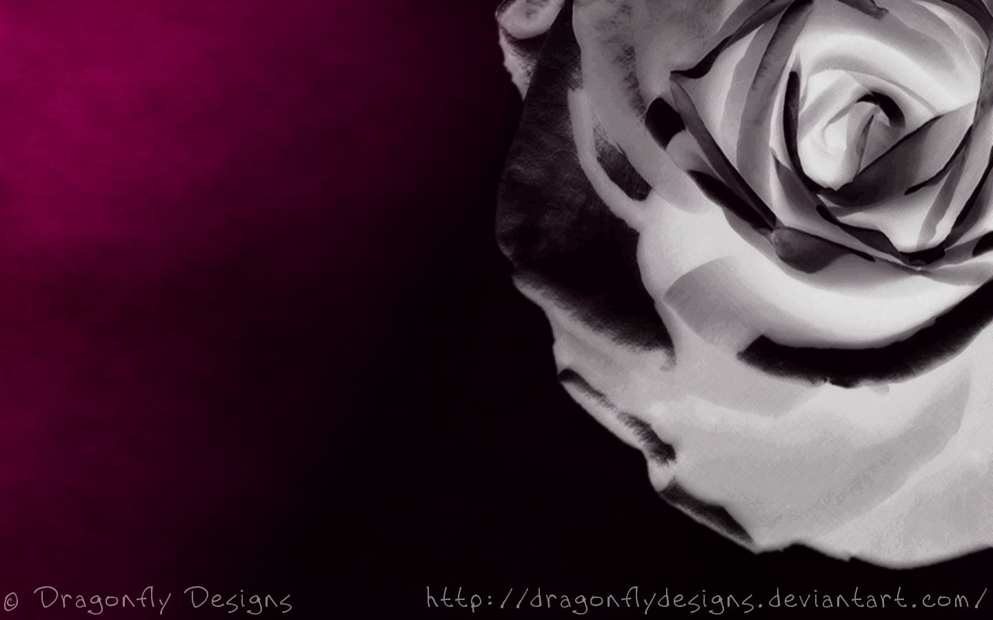 Gothic Rose Wallpaper fx wall 1440x900