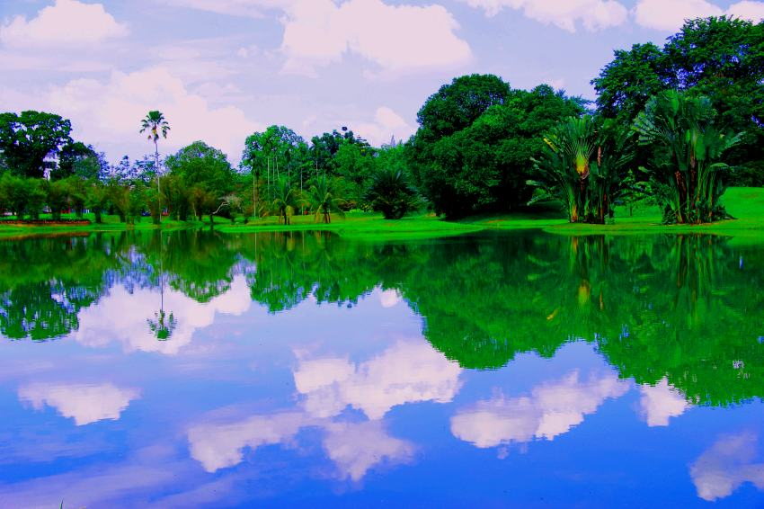 World Most Beautiful Nature Wallpaper - WallpaperSafari - photo#7