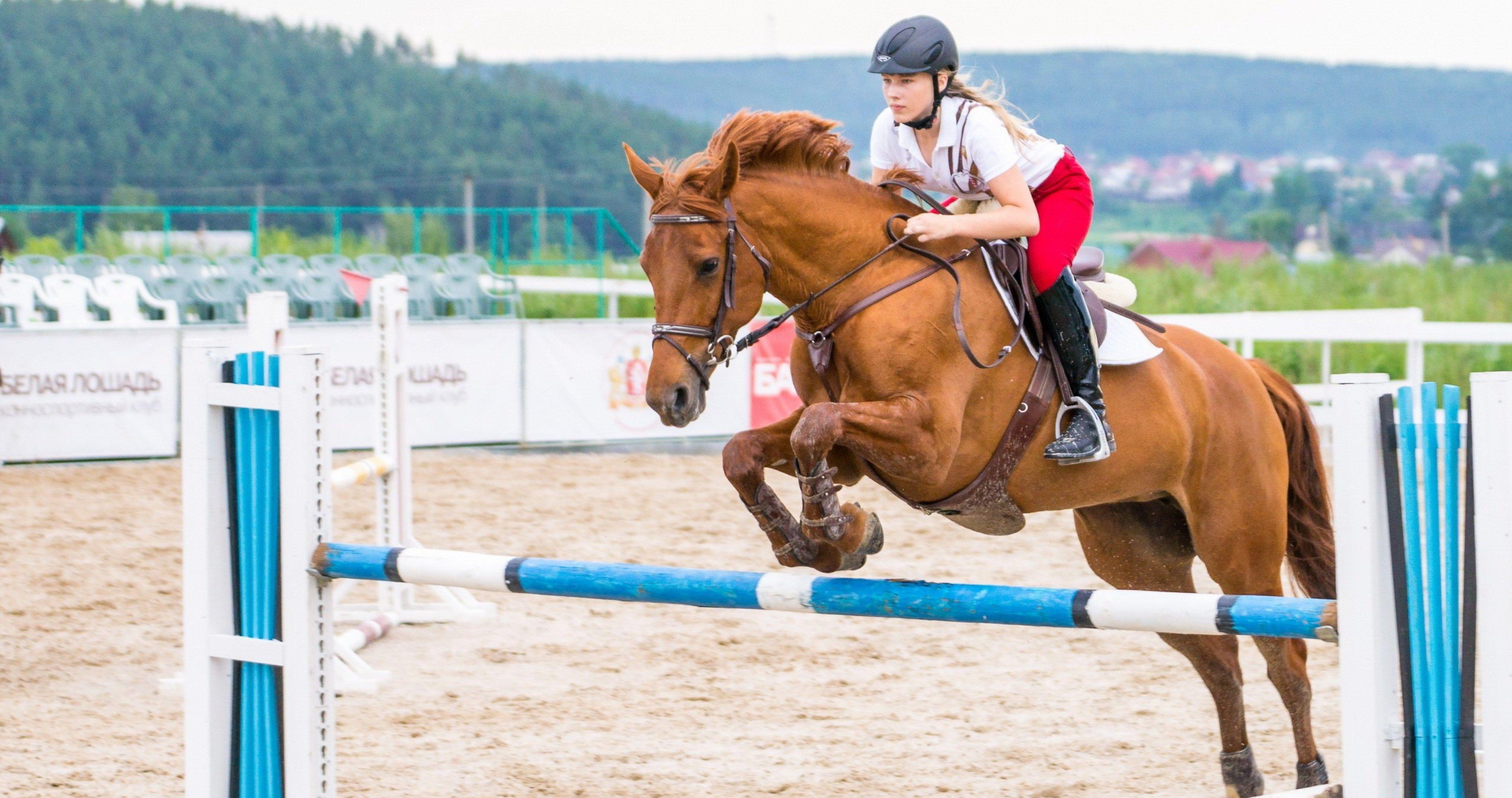 girl on horse sport 4k ultra hd wallpaper ololoshenka Horse 4096x2160