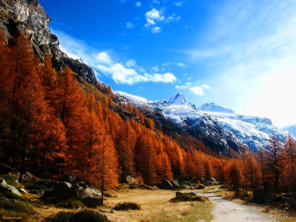 Fall Colors Snowy Mountains wallpaper 1024x768