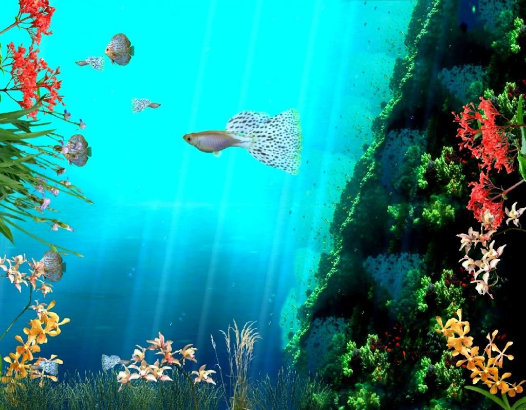 Moving 3D Desktop Wallpaper Angels - WallpaperSafari - photo#18