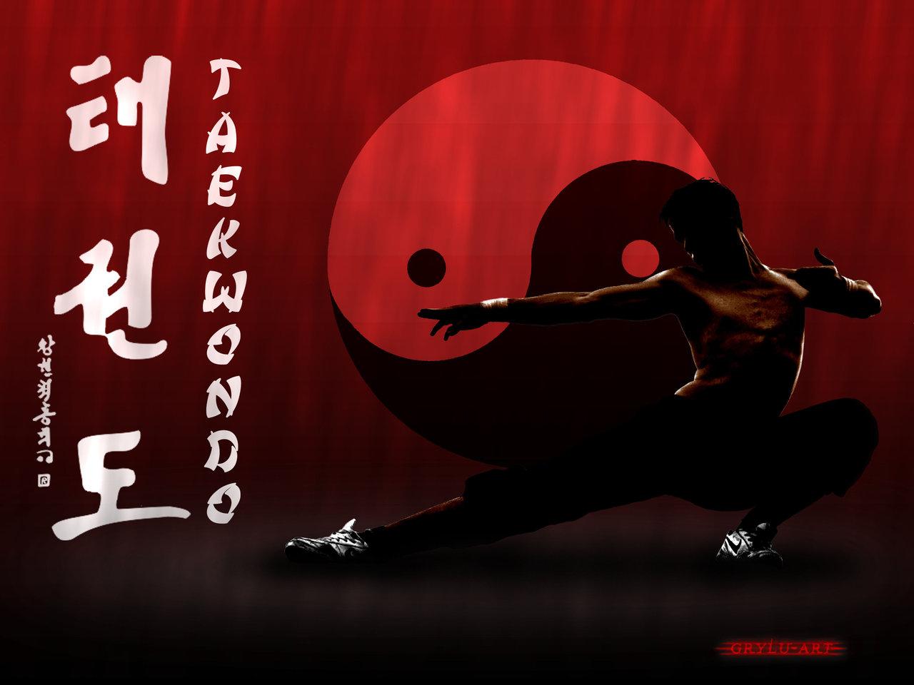 martial arts taekwondo by grylu3 1280x960