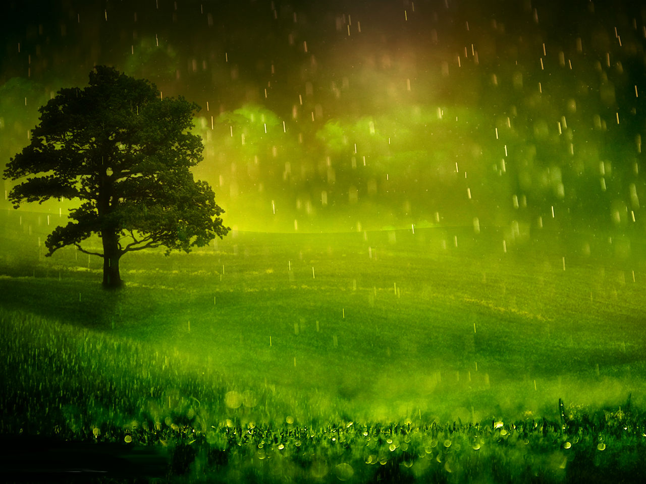 Rainy Day HD Wallpapers Pictures Images Backgrounds Photos 1280x960