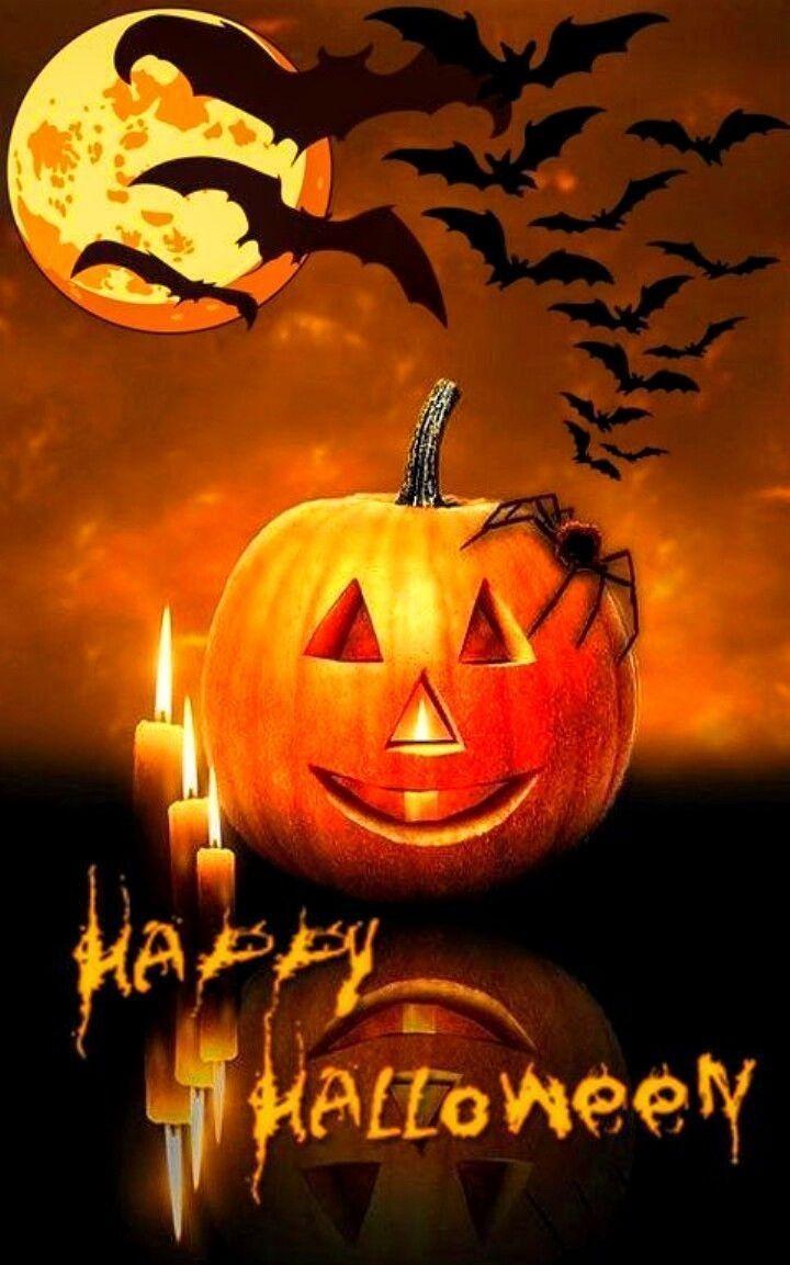 Halloween Wallpaper commercialpicture halloween 720x1153