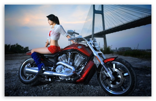 Harley Davidson HD wallpaper for Standard 43 54 Fullscreen UXGA XGA 510x330