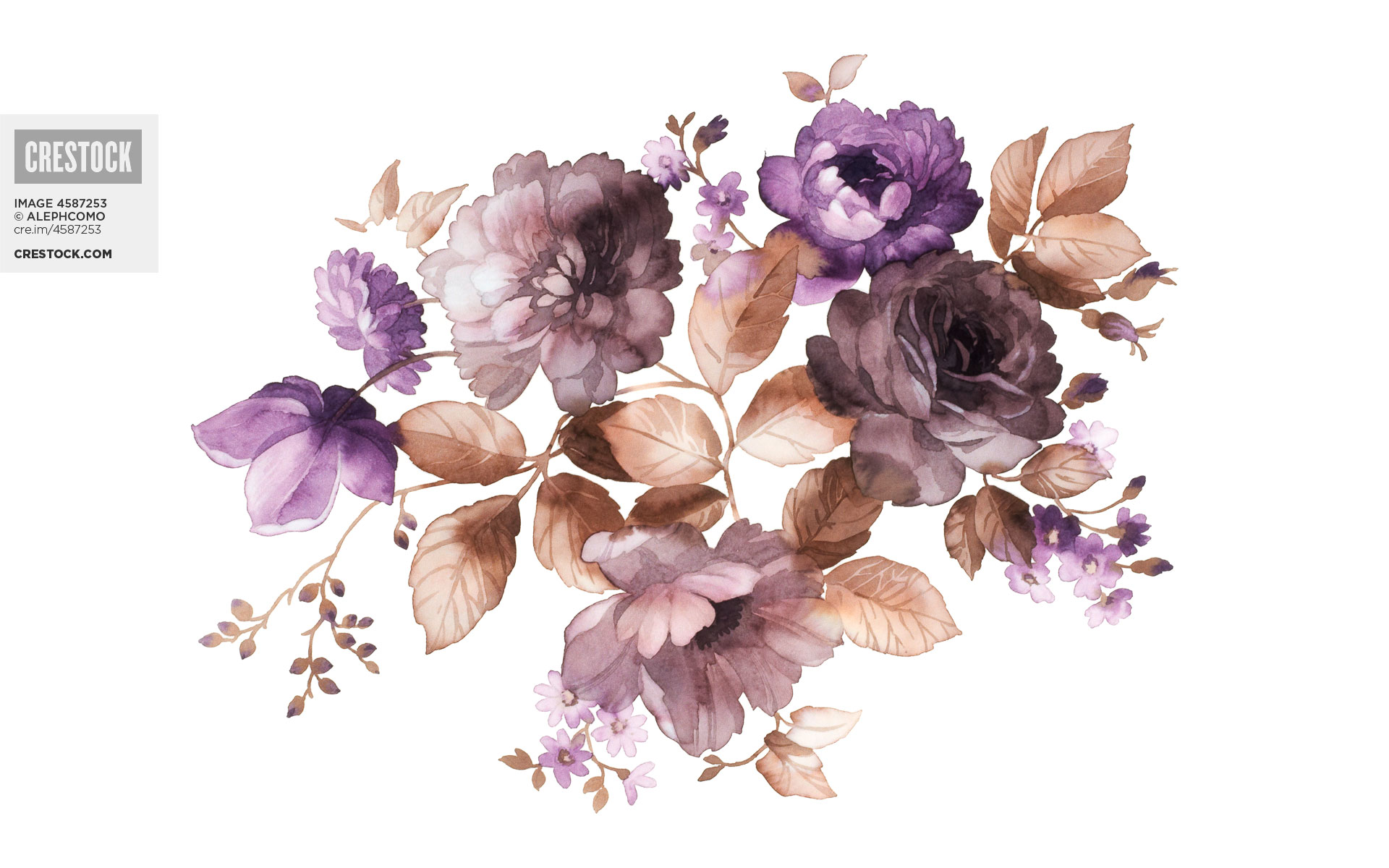 flower painting watercolor wallpaper - photo #18