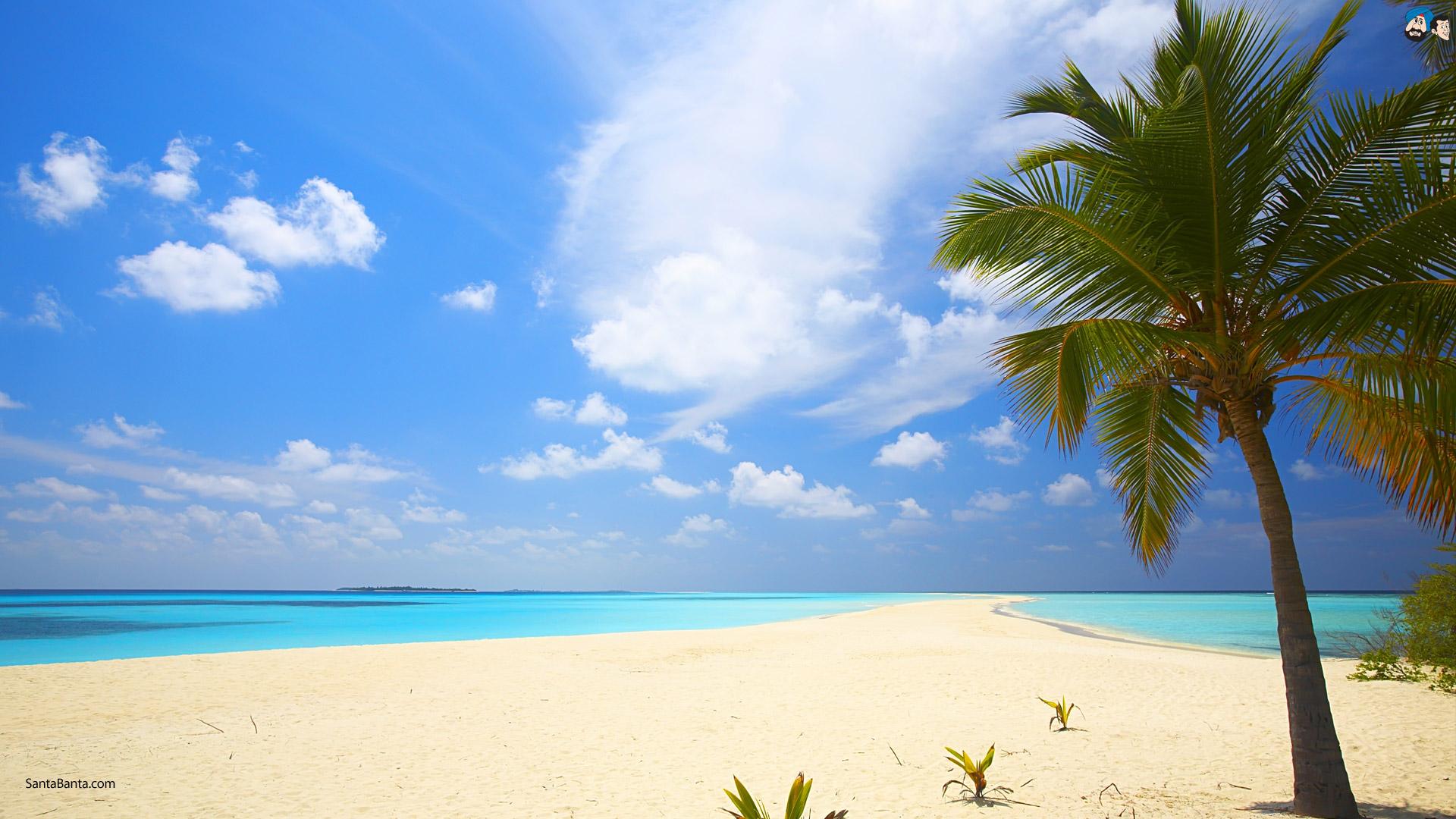 природа море пляж солнце  № 970618  скачать