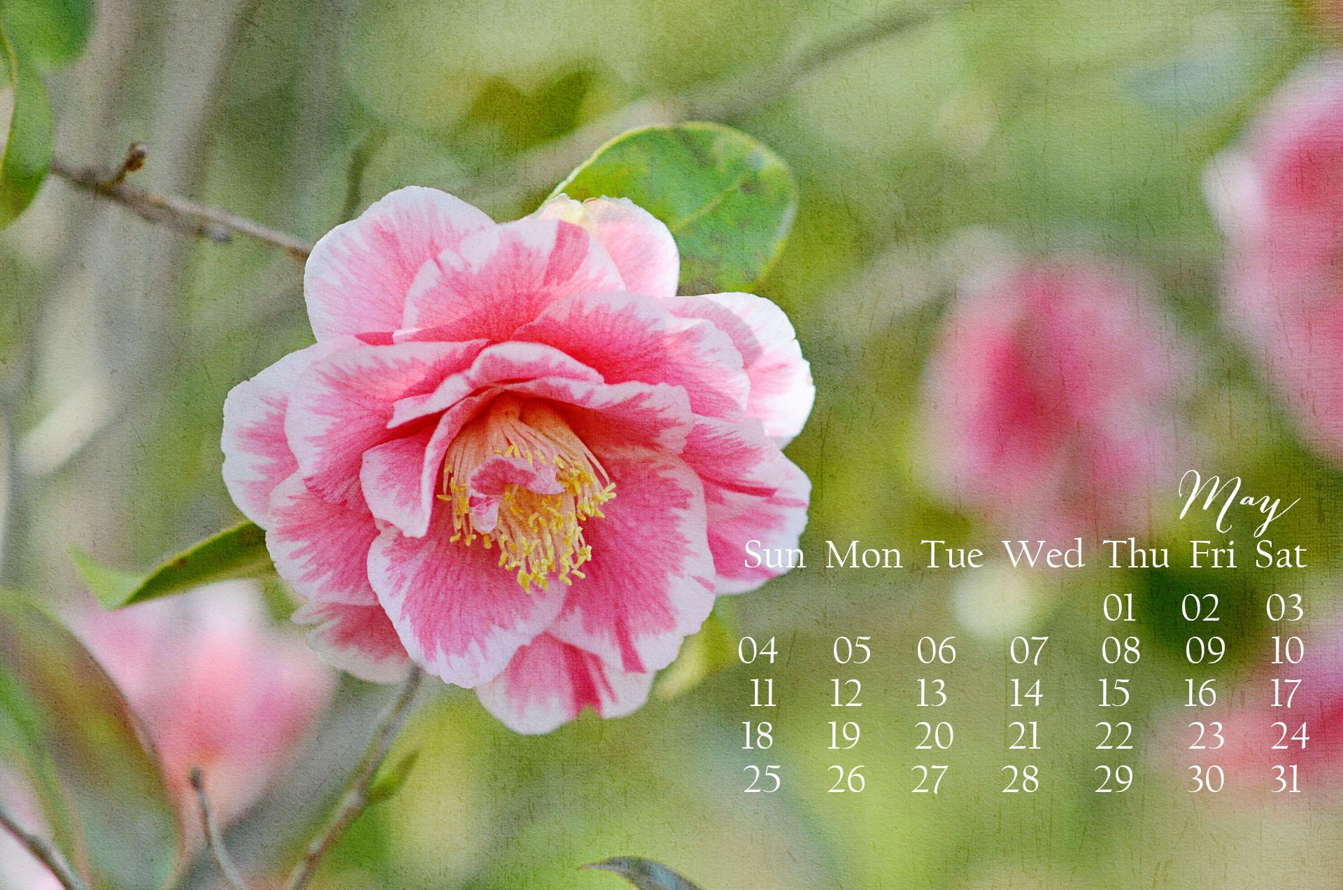 digital desktop wallpaper calendar customized for each month in 2015 1920x1272
