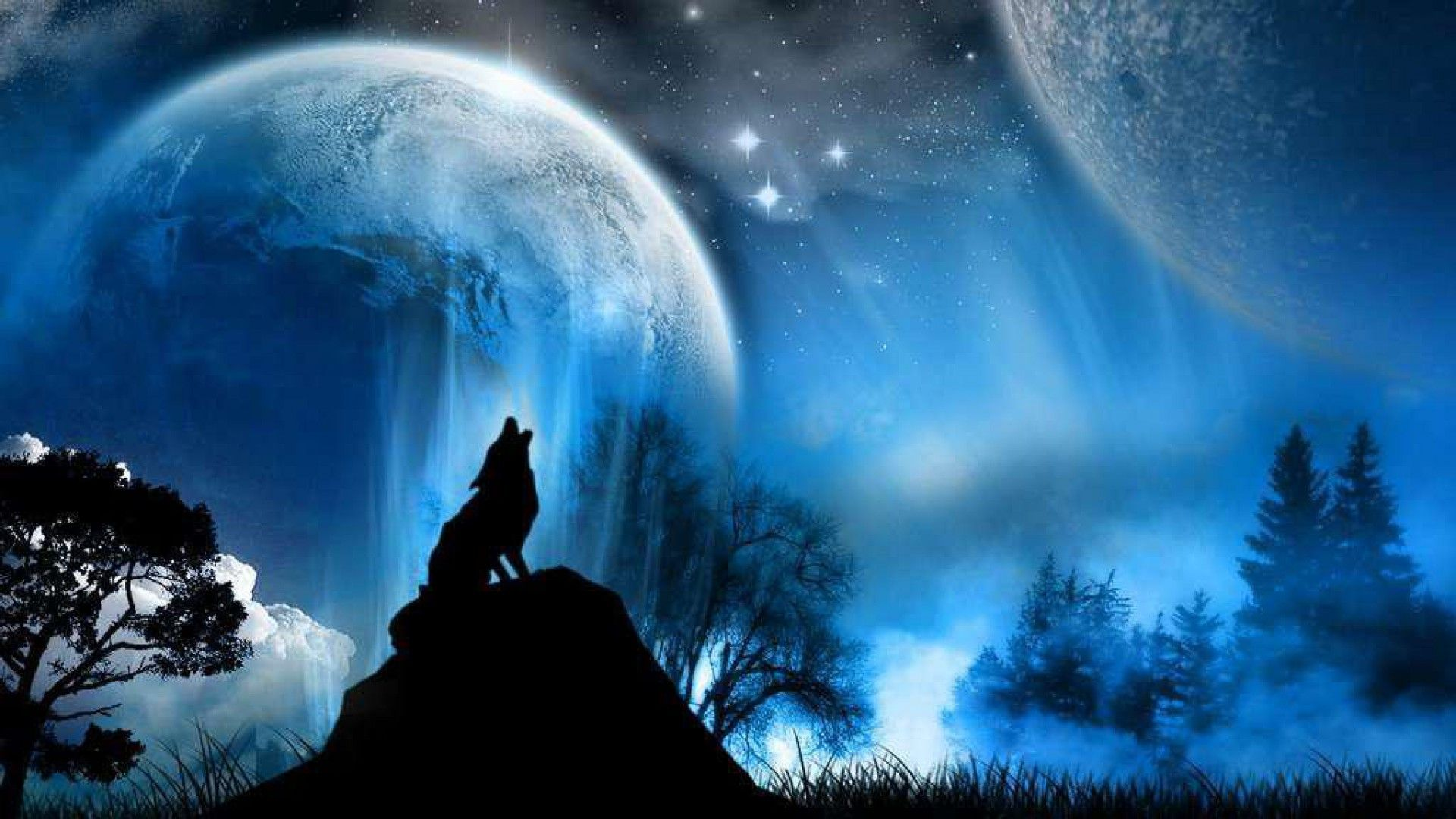 Hd wallpaper wolf - Wolf Wallpaper Hd 1080p Desktop 1223 Wallpaper Walldesktophd