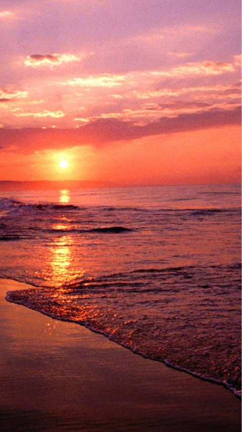 Beach Sea And Sunset Lg Phone Wallpapers 480x854 Cell Phone Hd ...