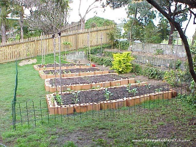 Vegetable Garden Wallpaper - WallpaperSafari
