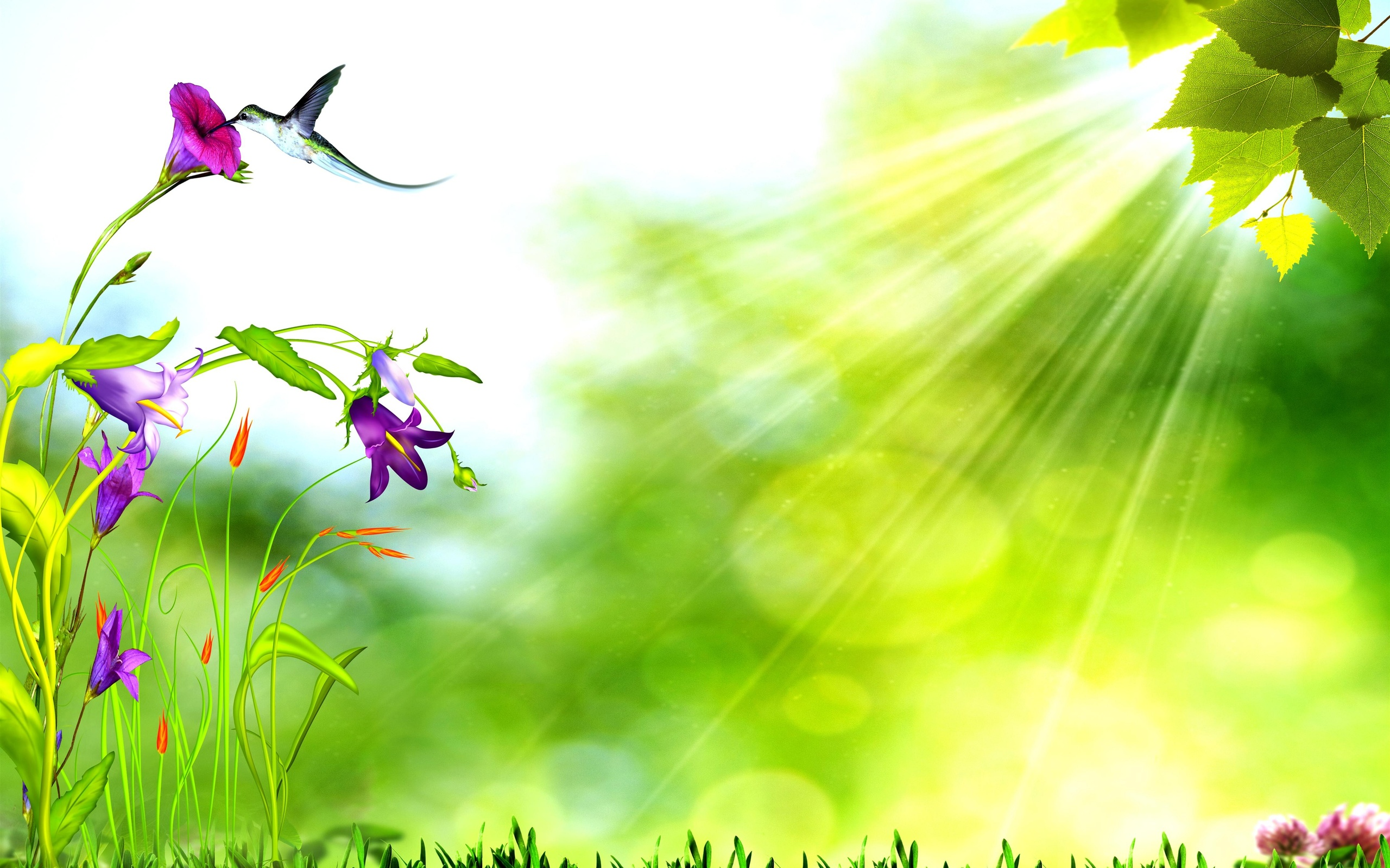 Free Background Nature 3d Backgrounds Nature