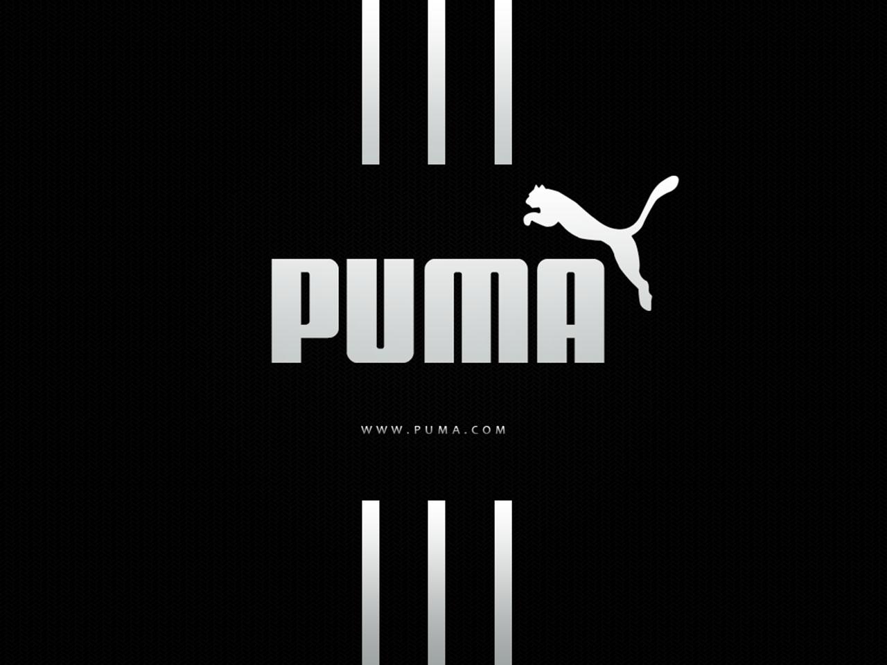 Puma Logo Wallpaper 5383 Hd Wallpapers in Logos   Imagescicom 1280x960