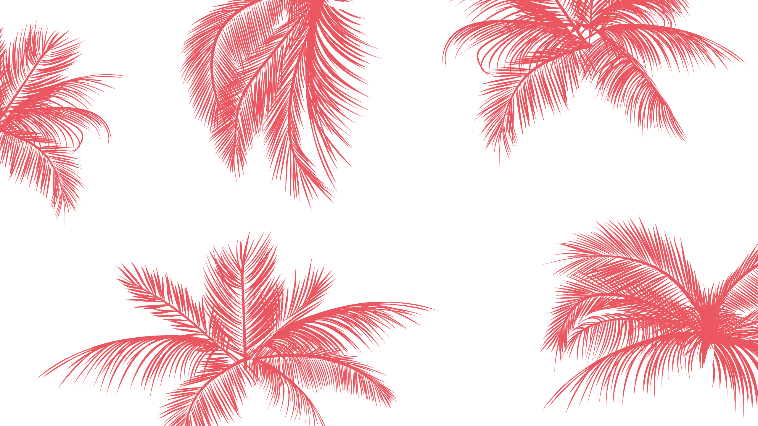 May Wallpaper 06   Desktop Wallpaper Pink Palm Trees 503288 2561x1441
