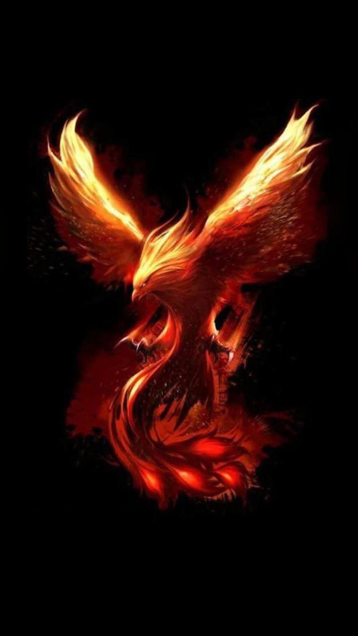 Phoenix Wallpaper 109 Mythical creatures in 2019 Phoenix bird 720x1280