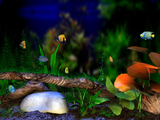 3D Bungalow Aquarium screensaver   the beautiful large aquarium 640x480