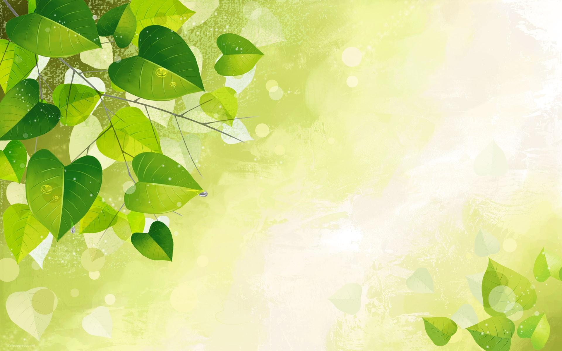 Art Leaf Wallpaper HD wallpapers   Green Vector Art Leaf Wallpaper 1920x1200