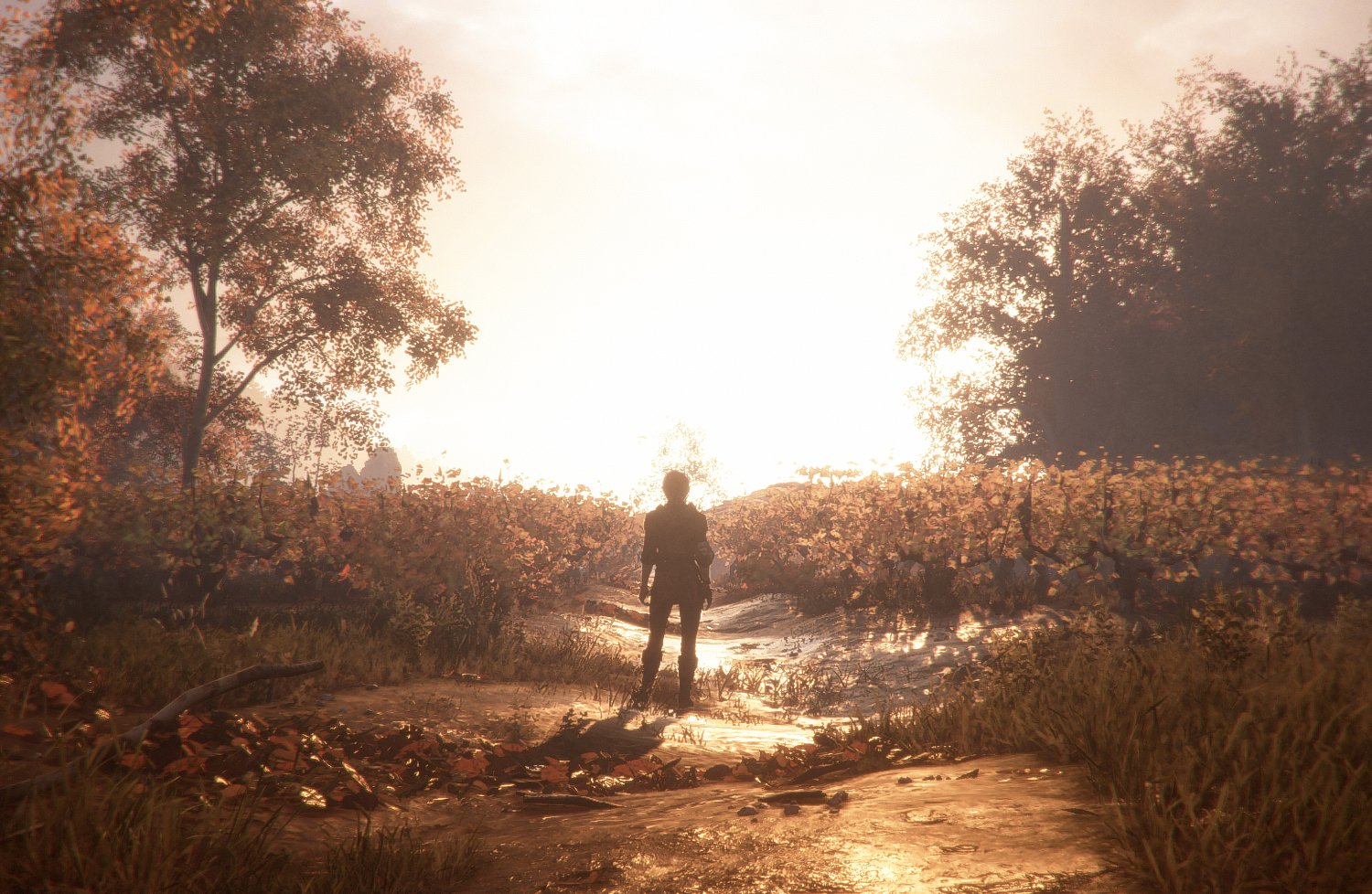 Review A Plague Tale Innocence Will Make You Squirm But Its 1500x978