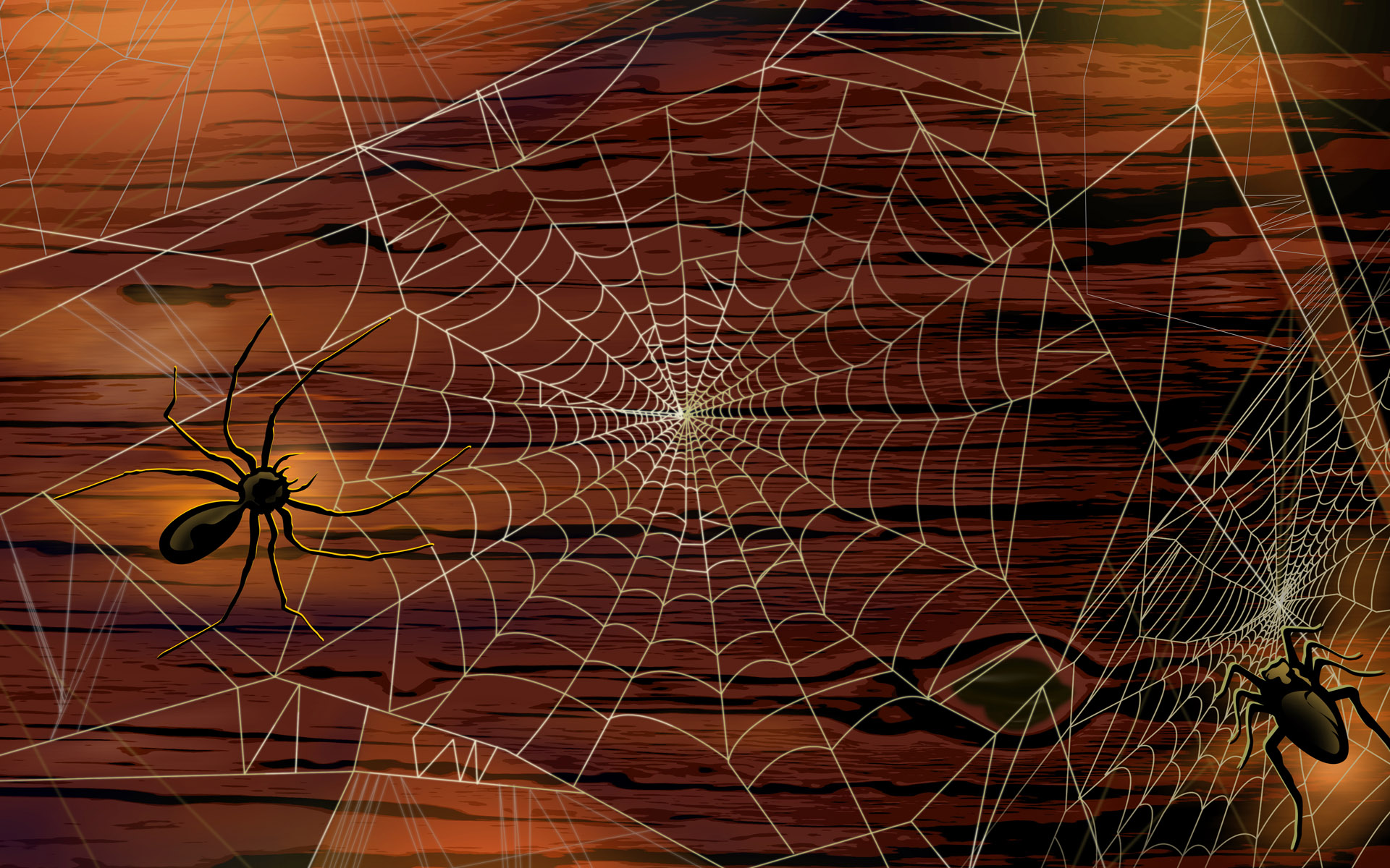 Scary Halloween 2012 Spiders HD Wallpaper 2 1920x1200