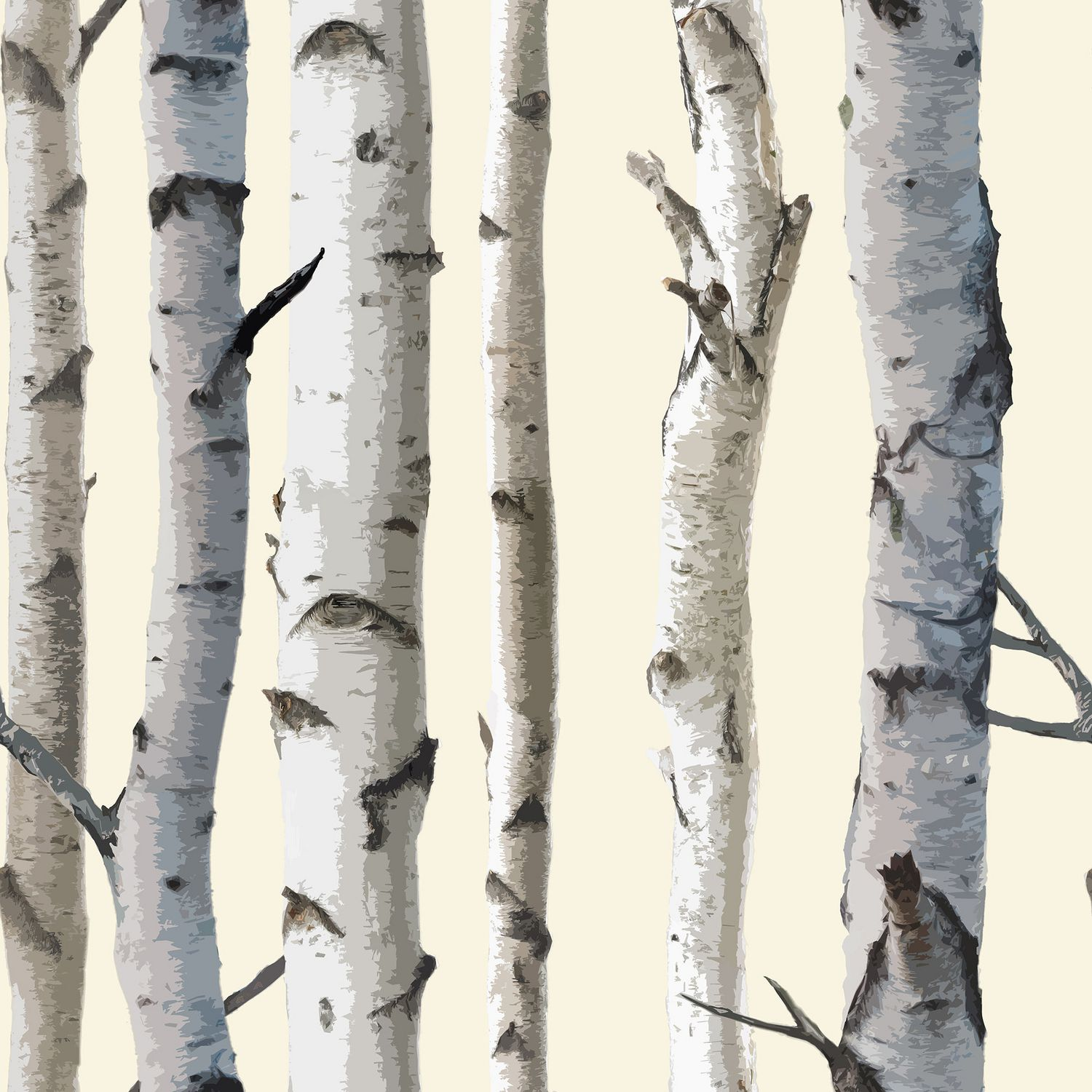 cole and sons birch tree wallpaper wallpapersafari